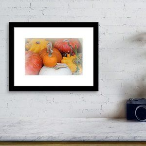 Mix of Pumpkins 8x10 Fine Art Photograph